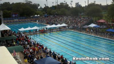 At Stanford, Ready to Swim
